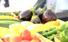 Spearfish Local Receives $100,000 Grant to Create Local Food Hub