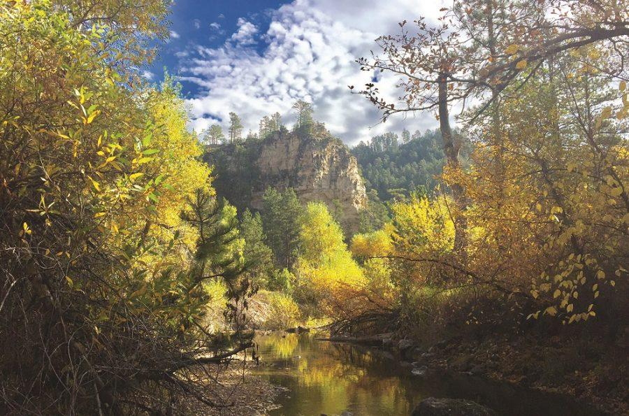 Fall Foliage Takes Over Spearfish Canyon
