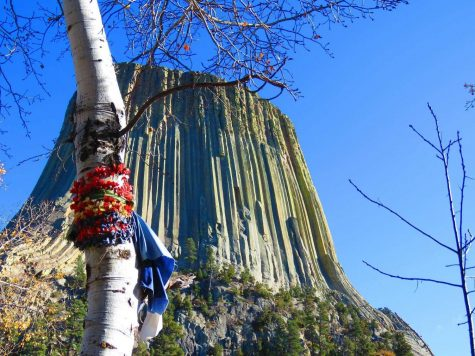 A Native American prayer cloth hugs a tree close to the base of Devil's Tower
