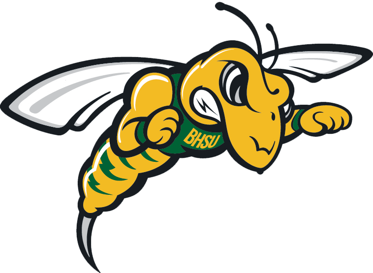 Top+10+Activities+for+BHSU+students+and+visitors